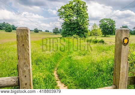Gateway To Grass Meadow, Surrey, England. June Colors.