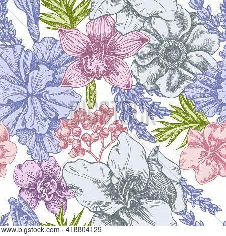Seamless Pattern With Hand Drawn Pastel Anemone, Lavender, Rosemary Everlasting, Phalaenopsis, Lily,