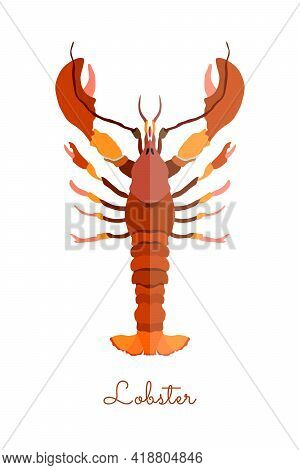 One Isolated Lobster Made In Flat Style. Colored Lobster Without Outlines, With Geometrical Shadows.
