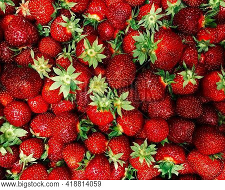Strawberries. Red Ripe Organic Strawberry Background. Top View.