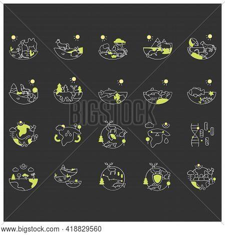 Biodiversity Chalk Icons Set. Consists Of Desert, Grassland, Tundra, Freshwater, Rainforest, Coral R