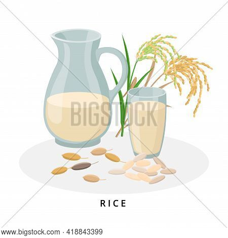 Rice Milk In Jug And Glass, Rice Seeds. Plant Milk, Vegan Milk Concept. Vector Illustration Isolated