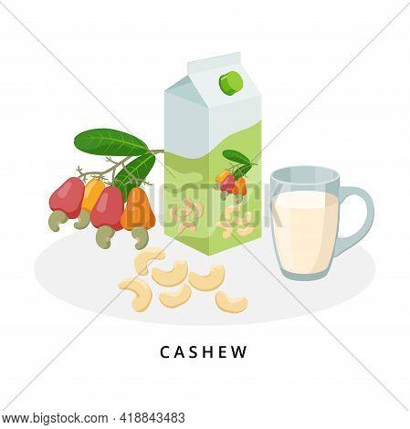 Cashew Milk In Jug And Glass. Plant Milk, Vegan Milk Concept. Vector Illustration Isolated On White