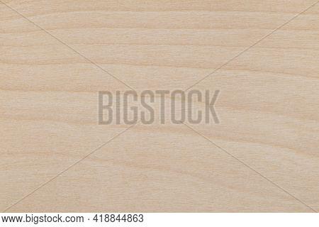 Texture Of Decorative Beige Birch Wood Veneer