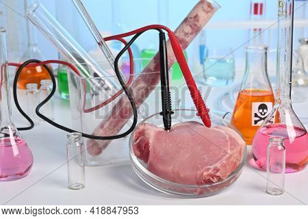 Lab Test Of Artificial Grown Meat With Electrodes. Meat Grown Up In Laboratory Conditions In A Petri