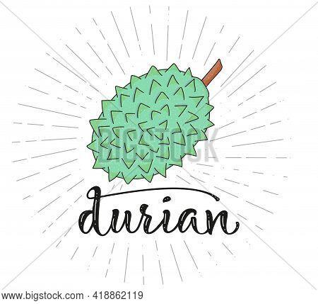 Durian - Fruit Symbol For Farm Market Menu. Healthy Food Design