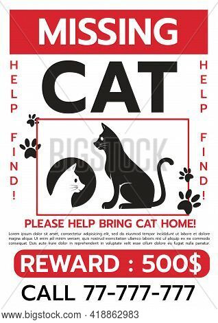 Lost Cat. Reward For The Find. Missing Poster Template. Lost Pet Poster. Sheet With The Announcement