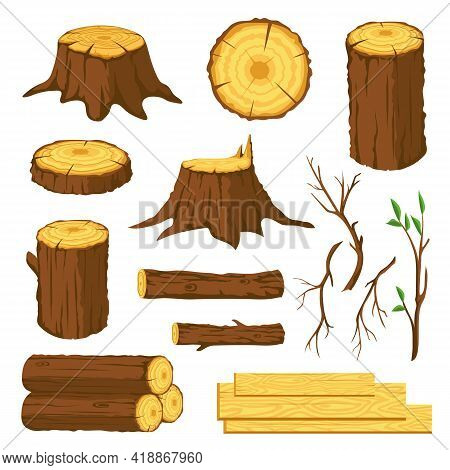 Wood Logs. Firewood, Tree Stumps With Rings, Trunks, Branches And Twigs. Lumber Industry Forest Mate