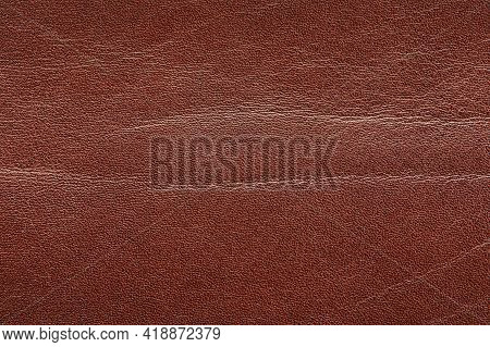 Structure Of Brown Skin Texture