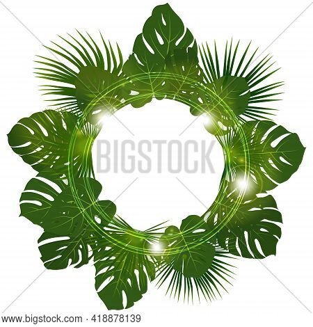 Monstera And Washingtonia Palm Leaf Vector Frame. Rainforest Plant Green Tropical Foliage Wreath. Ve