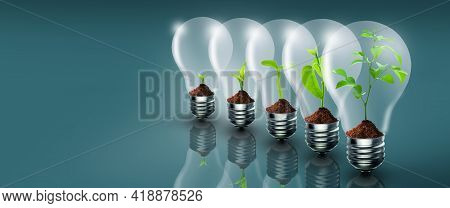 Seedlings Growing. Tree With Soil Growing Sequence In Light Bulbs. Nature Ecology, Growth, Think Gre