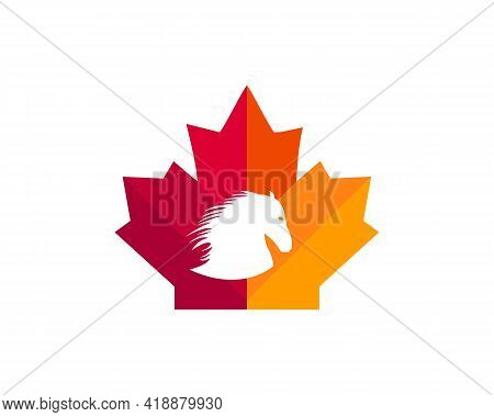 Maple Horse Logo Design. Canadian Horse Logo. Red Maple Leaf With Horse Head Concept Vector