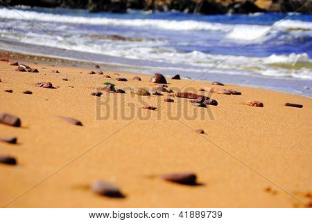Golden sand beach with blue ocean