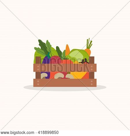 Wooden Box With Fresh Vegetables. Eggplant, Cabbage, Broccoli, Tomato, Beet, Pepper, Carrot,mushroom