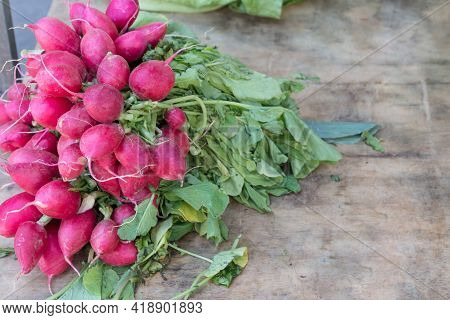 Bunch Of Spicy Juicy Ripe Radish On Wooden Table Background. Group Of Raw Organic Nature Food From G