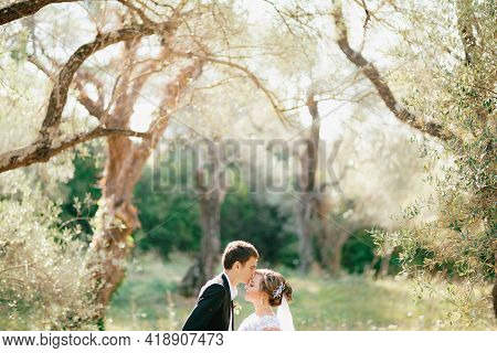 The Bride And Groom Stand Embracing In The Olive Grove, The Groom Kisses The Bride On The Forehead