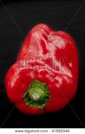 Red Pepper Black Backgound