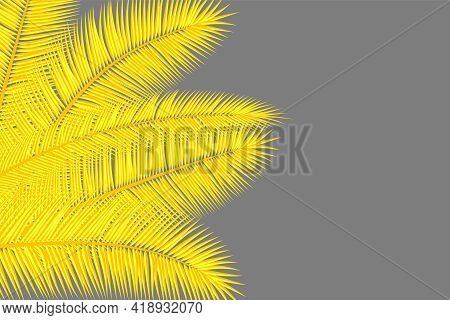 Yellow Palm Leaves On Grey. Floral Tropical Background. Yellow And Gray Colors Abstract Cover Design
