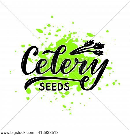 Vector Illustration Of Celery Seeds Lettering For Packages, Product Design, Banners, Stickers, Spice