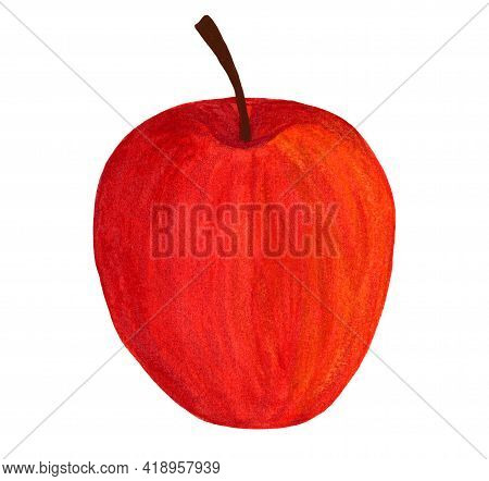 Fresh Whole Apple. Watercolor Red Gala Apple Fruit Isolated On White Background. Side View