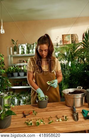 Young Girl In Overalls Working As A Gardener In A Home Garden. Home Letting Concept. Gardeners Desk