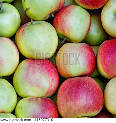 Background And Texture Of Ripe Red-green Striped Apples, Unwashed, Freshly Picked, Neatly Arranged,