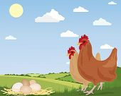 an illustration of two free range chickens with newly laid eggs on straw and scenic countryside under a blue summer sky poster
