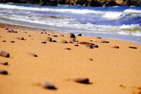Golden sand beach with blue ocean