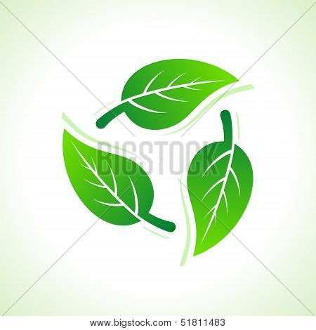 Green leaves make a recycle icon