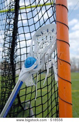 Lacrosse Stick In Net