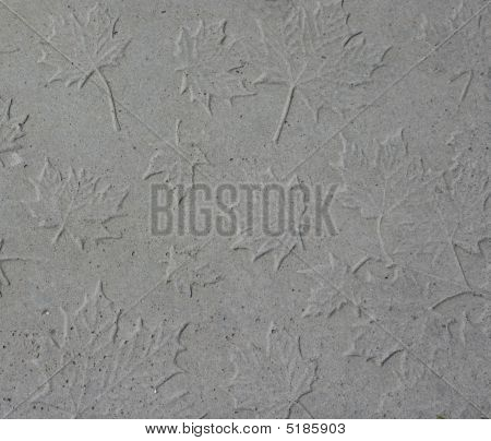 Concrete Stamped With Maple Leaves