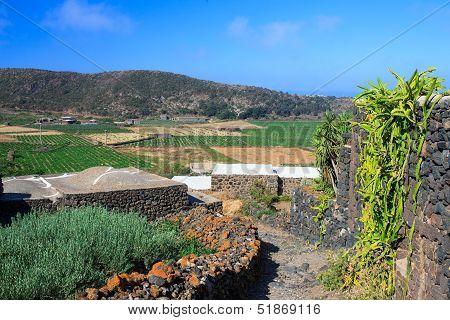 Dammuso, Pantelleria