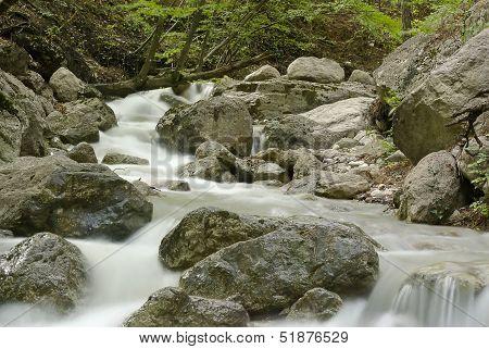 Mountain Stream In The Woods Crimea, Ukraine