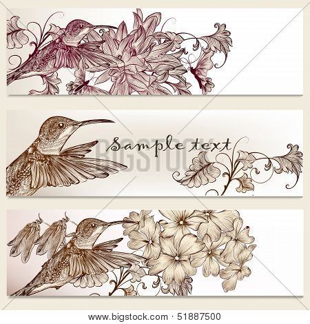 Vector set of floral hand drawn brochures with hummingbirds for business cards design poster
