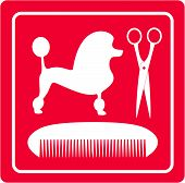 pink grooming icon with poodle dog, scissors and comb silhouette poster