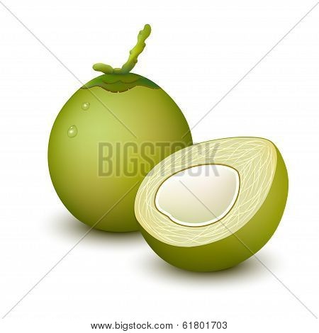 Young green coconut