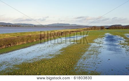 Flooded Riverside Fields