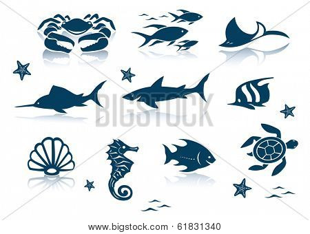 Marine life icon set