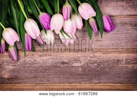 Freshly cut tulip flowers over old wood background, with space for you text.