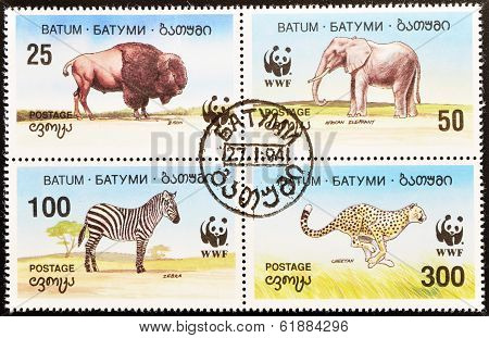 BATUM - CIRCA 1994: A stamp printed in Batum shows elephant bison zebra and cheetah seire circa 1994