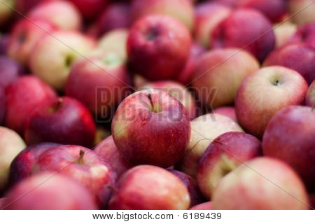 Large Group Of Red Apples
