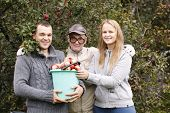 Husband, wife and grandfather with fruitage. Man holding full bucket of fresh apples, woman putting some fruit on the top, all looking to the photographer poster