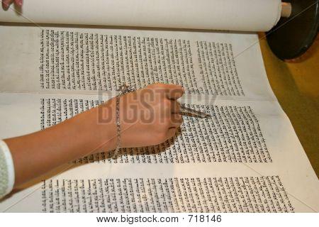 Young woman reading Torah