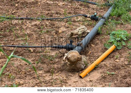 Drip Irrigation System. Water Saving Drip Irrigation