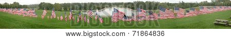 Hundreds Of American Flags In Forest Park, Saint Louis, Missouri