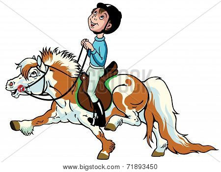 little boy riding shetland pony