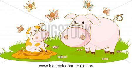 Pigs on the meadow
