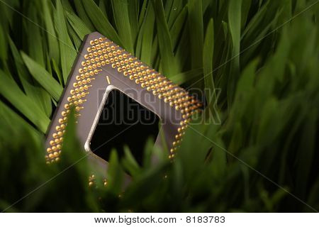 Cpu In A Green Meadow