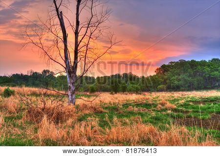 An Hdr Landscape