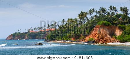 Coast with palm trees at sunny day near the town of Weligama, Sri Lanka